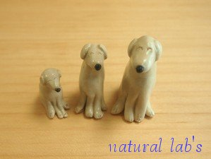 natural-lab's