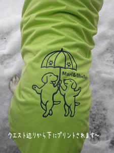 可愛いラブラドールのイラスト付きレインコートです