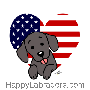 Black Labrador American Heart Cartoon 1 Gifts by HappyLabradors.com