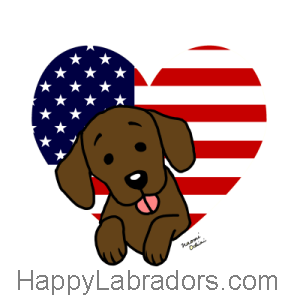 Chocolate Labrador and American Heart 1 Cartoon Gifts by HappyLabradors.com