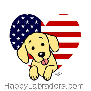 Yellow Labrador American Heart Cartoon Gifts by HappyLabradors.com