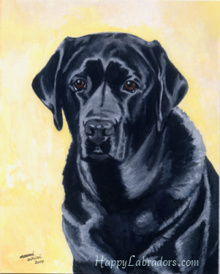 Black Labrador Painting by HappyLabradors.com