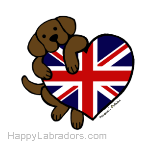 Chocolate Labrador holding British Heart Gifts by HappyLabradors.com