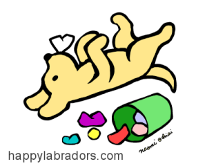 Living with A Yellow Labrador Cartoon Gifts by HappyLabradors.com