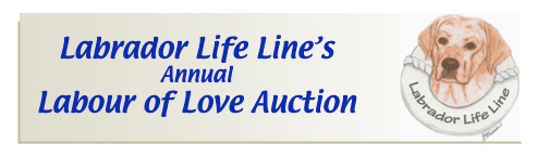 Labrador Life Line annual Labour of Love Auction