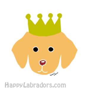 Cute Yellow Labrador Cartoon created by Naomi Ochiai
