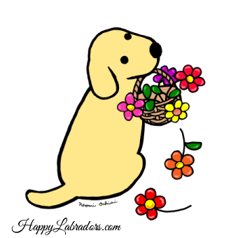 Yellow Labrador Flower Basket Cartoon Gifts by HappyLabradors.com