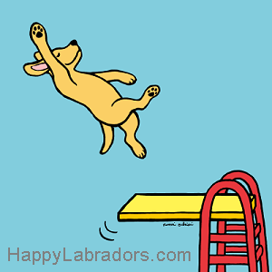 Yellow Labrador Diving Cartoon Gifts by HappyLabradors.com