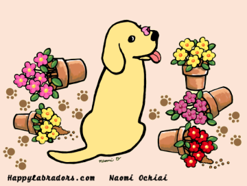 Sweet Yellow Labrador Cartoon created by Naomi Ochiai