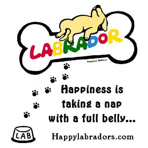 Cute Yellow Labrador Cartoon by Naomi Ochiai