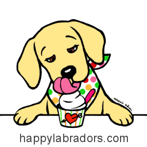 Funny Yellow Labrador Cartoon design by Naomi Ochiai