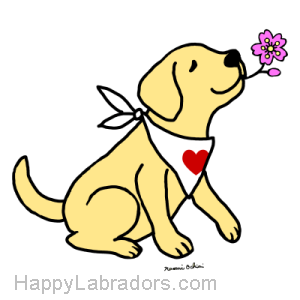 Cute Yellow Labrador Cartoon Design created by Naomi Ochiai