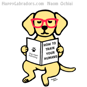 Hipster Yellow Labrador Puppy Cartoon by HappyLabradors.com