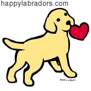 Adorable Yellow Labrador Puppy Cartoon design by Naomi Ochiai