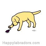 Yellow Labrador Friendly Digital Drawing created by Naomi Ochiai from Japan